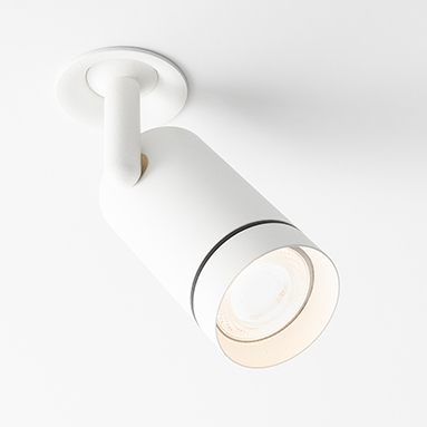 Fenos LED Lighting Recessed Adjustable Feature Aro RA